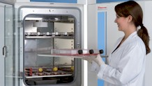 Microbiological Incubators & Environmental Chambers