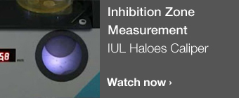 Inhibition Zone Measurement